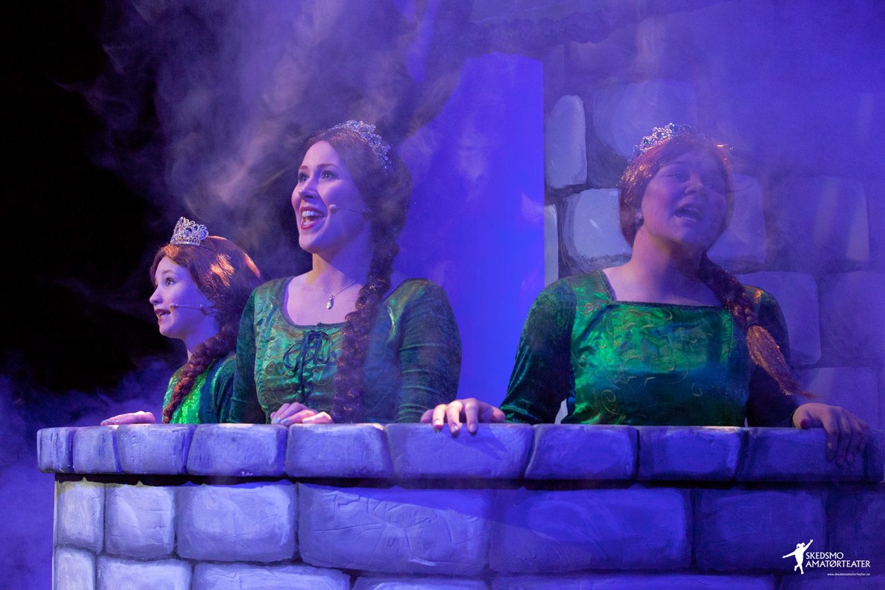 Fiona er fanget i tårnet i 9233 dager, og slipper ikke ut på grunn av den ildsprutende dragen - før Shrek kommer henne til unnsetning.
