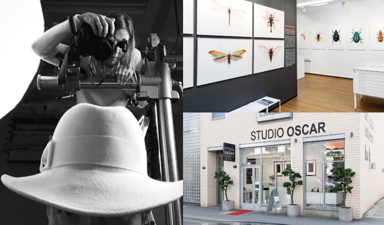 e31ccae43 Studio Oscar