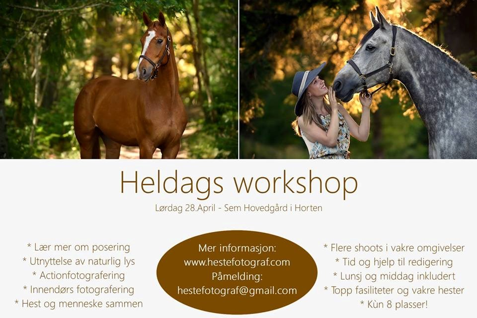Heldags Workshop på Semb Hovedgård