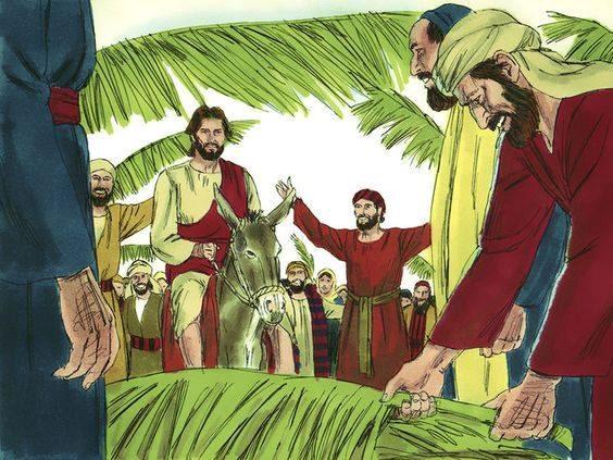 Palmelørdagssamling