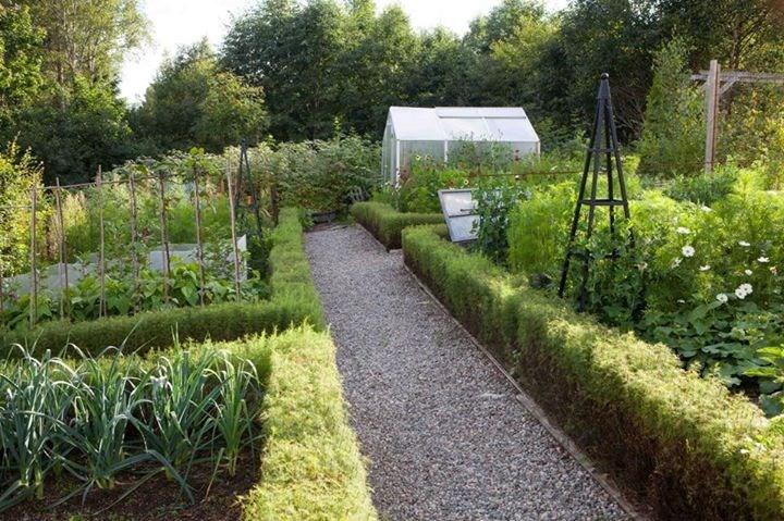 Dyrking av grønnsaker i hagen med Tommy Tønsberg fra Garden Living