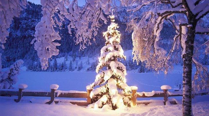 Julemarked på Horten Roklubb